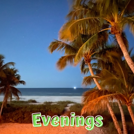 Evenings at Beach Deliglht