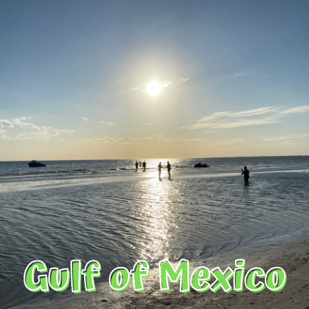 On the Gulf of Mexico