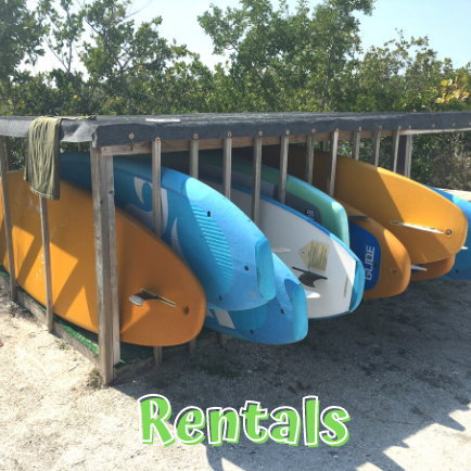 Rent Paddleboards at Lovers Key State Park